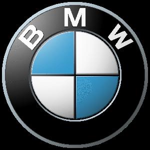 polish auto bmw