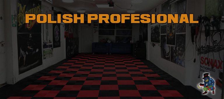 polish auto profesional